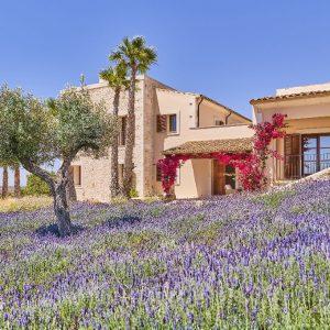 Mallorca Villa ALQUERIA BLANCA - NEUBAUFINCA MEERBLICK Garten Eingang